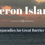 Reisebericht Heron Island