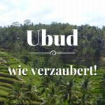 Reisebericht Ubud
